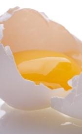 Vitaminas del huevo